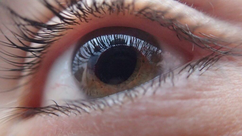 טיפול ליובש בעיניים | עדשות לעיניים יבשות